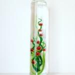 algue verte et rouge